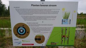 Plant-e Projects - experiment province south holland