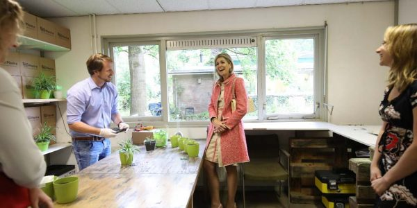 Plant-e About us - planting statement with Queen Maxima