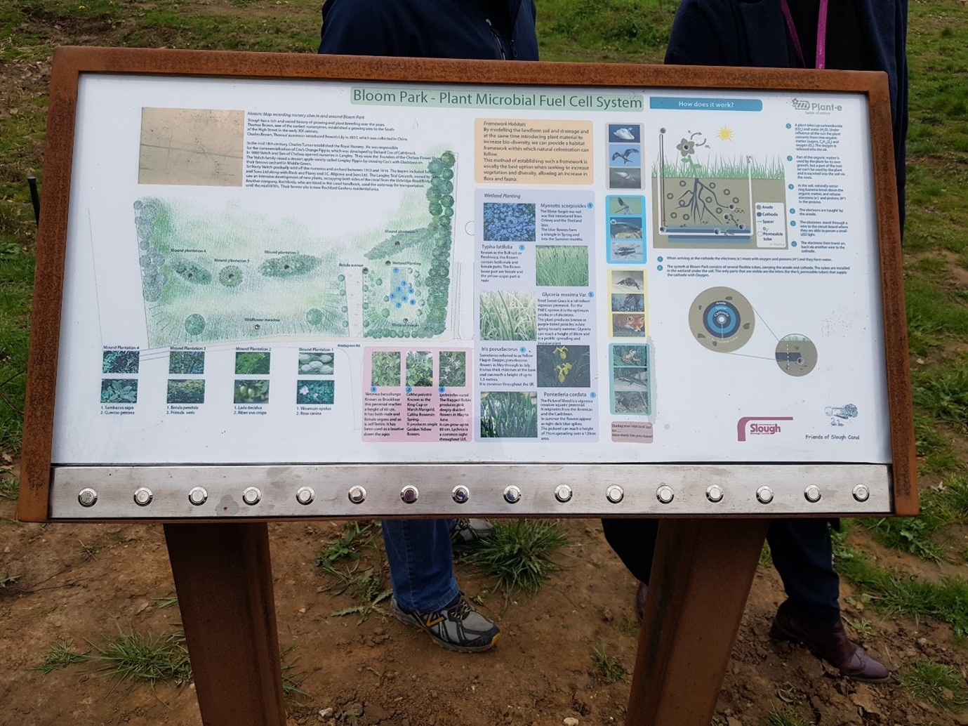 Bloompark & Urban Forest – Slough, UK - August 2020